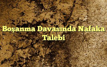 Boşanma Davasında Nafaka Talebi
